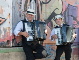 Hire Accordion Players For Weddings - Book Piano Accordion and