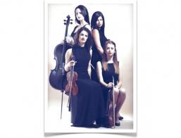 Apollo Strings